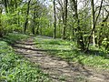 Hardwick Wood Entrance - Footpath to the Left - geograph.org.uk - 785836.jpg