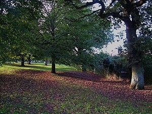 Heavitree - Part of Heavitree Pleasure Ground