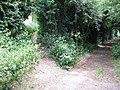 Hedged footpath junction at Ombersley, Worcestershire.jpg