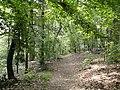 Hemlock Gorge (Charles River Reservation) - DSC09479.JPG