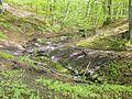 Hesede skov - panoramio (1).jpg