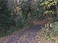 Hickmerelands Lane, Sedgley - geograph.org.uk - 1049757.jpg