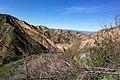 Hiking Towsley Canyon (2324762604).jpg