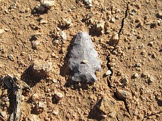 In situ - Ancient Hohokam arrowhead in situ.