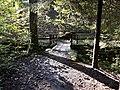 Holzbrücke Fürtlibach Zürich.jpg