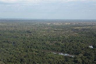 Mato Grosso do Sul - Pantanal