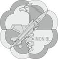 IMON BL oznk rozp (2019) mundur p.png