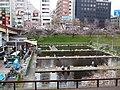 Ichigaya (49703434693).jpg