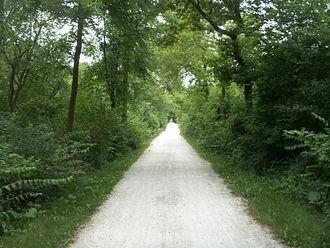 Grand Illinois Trail - The Illinois Prairie Path in Wheaton, Illinois.