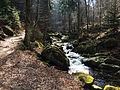 Ilse im Harz nahe Ilsenburg.JPG