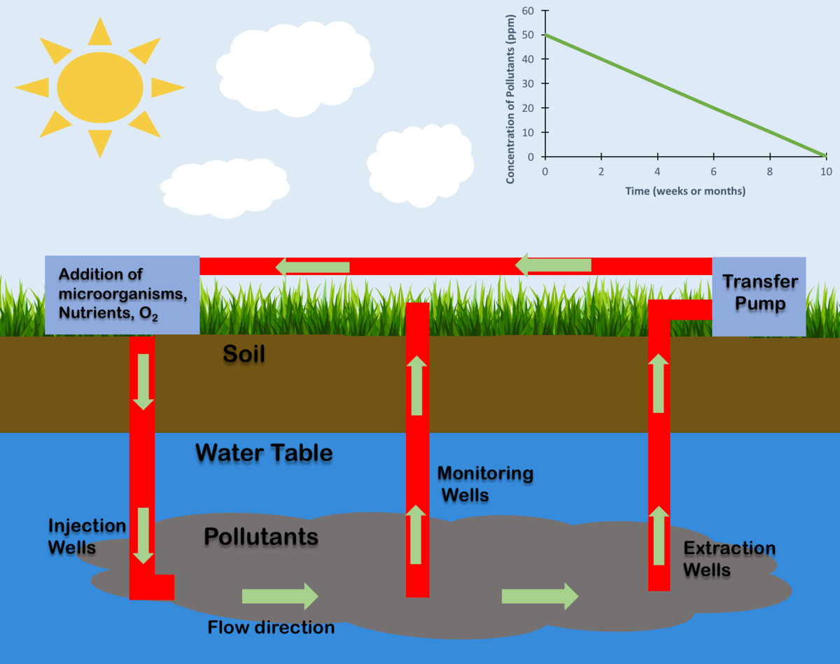 Bioremediation of Polluted Soil Sites with Crude Oil Hydrocarbons Using Carrot Peel Waste