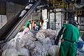 Incineração de três toneladas de drogas (40211544663).jpg