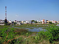 India - Chennai - Velichery - Tansi Nagar is built in a swamp 2 (2275982075).jpg