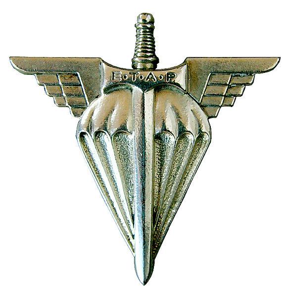 http://upload.wikimedia.org/wikipedia/commons/thumb/4/49/Insigne_de_l-ETAP.jpg/592px-Insigne_de_l-ETAP.jpg
