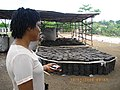 Inspecting waste to wealth project in Port loko.jpg