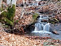 Invierno 2011 en Tejera negra - panoramio (8).jpg