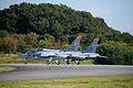 Iruma Air Base Festival 2015 (22720860706).jpg