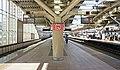 JR Chuo-Main-Line Musashi-Koganei Station Platform 1・2.jpg