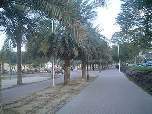 Al Jafilia - Image: Jafilia Dubai 200701