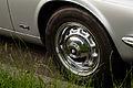 Jaguar Radkappe 20140607 4.jpg