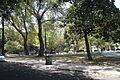 Jardim da Praceta Afrânio Peixoto 8936.jpg