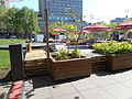 Jardins Gamelin 08.jpg
