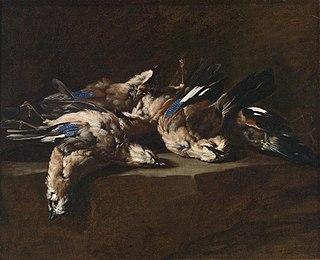 Joannes Hermans