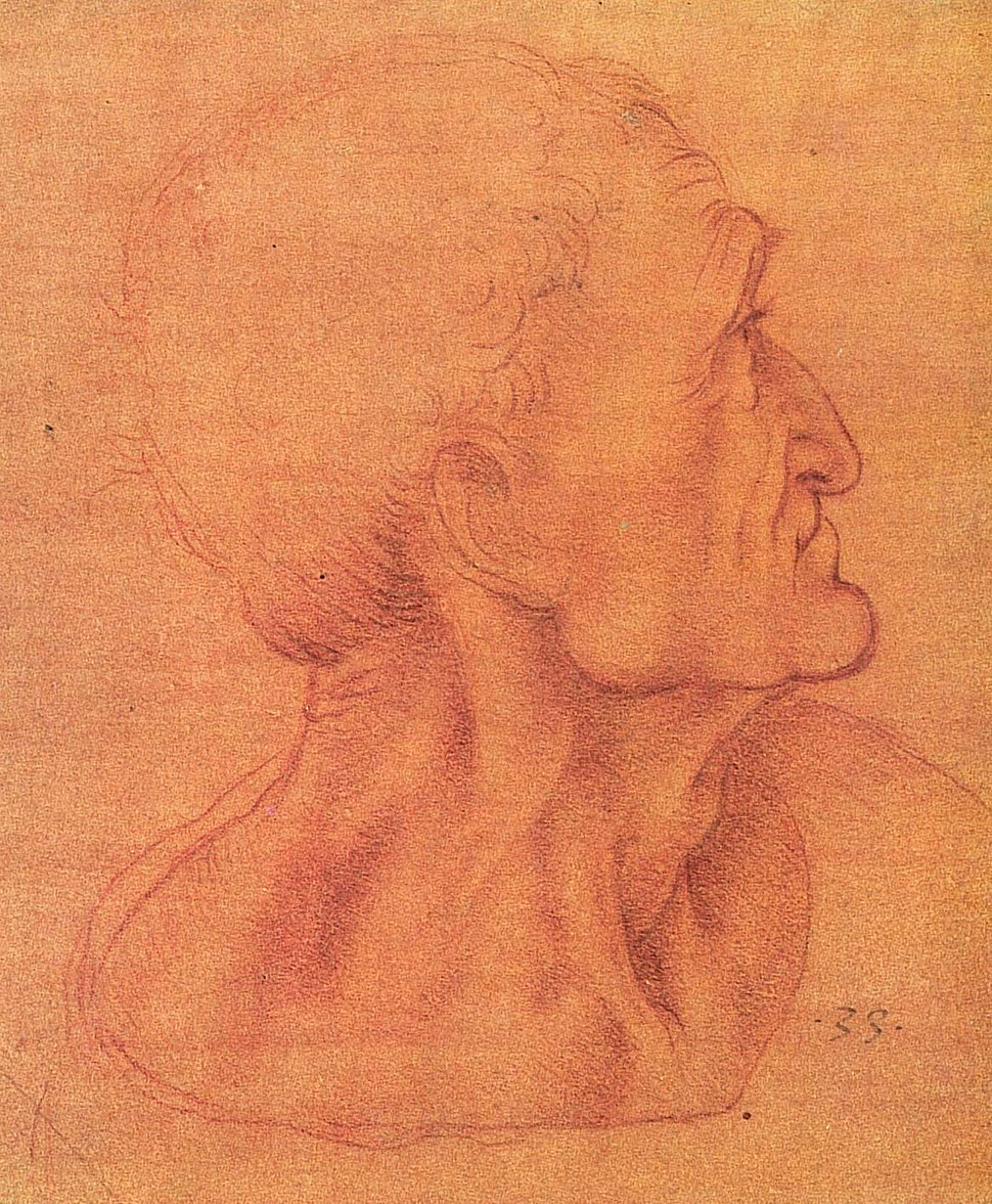 Judaskopf (da Vinci)