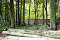 Kölner-Stadtwald-HGK-Trasse-im-Hintergrund.JPG