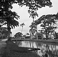 Kanaal in Nieuw-Nickerie, Bestanddeelnr 252-5421.jpg