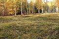 Kapellbäckens gravfält (Hedemora 65-1) 09.JPG