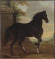 Karl XIs livhäst Tott (David Klöcker Ehrenstrahl) - Nationalmuseum - 14801.tif