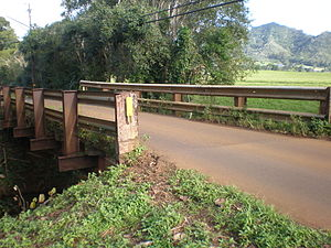 Pu'u'opae Bridge - Bridge and neighboring pasture land
