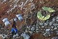 Kawah-Ijen Indonesia Ijen-Sulfur-Miner-08.jpg