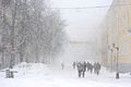 Kevadine lumetorm Tartus.jpg