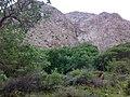 Khorasan Razavi, Unnamed Road, Iran - panoramio (5).jpg