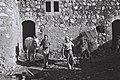 Kibbutz Jezreel stable.jpg