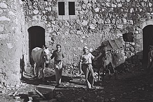Yizre'el - Kibbutz stable in 1949