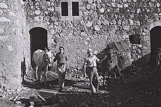 Yizre'el - Kibbutz stable in 1949