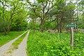 Koenigsbruecker Heide 10.jpg