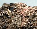 Kozulite-Rhodonite-244417.jpg
