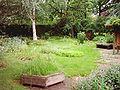 Kräutergarten Hammer Park 012.jpg