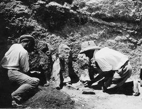 Kristos och Alfred Westholm gräver statyer i rum 117. Vouni. Galini - SMVK - C02206.tif