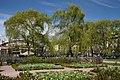 Kungsträdgården - panoramio (2).jpg