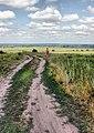 Kuzminskoye, Ryazanskaya oblast', Russia, 391103 - panoramio (33).jpg