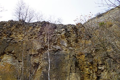 LSG HM 00026 Hessisch Oldendorfer Wesertal Nord - bei Pötzen - Steinbruch am Hohenacken (43).jpg