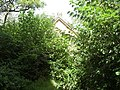La Capilla abandonada.jpg