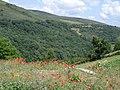 La Faba - panoramio - HJ.Weinz.jpg