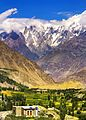 Lady Finger from Nagar Valley.jpg