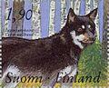 Lapland-Sheepdog-Canis-lupus-familiaris.jpg